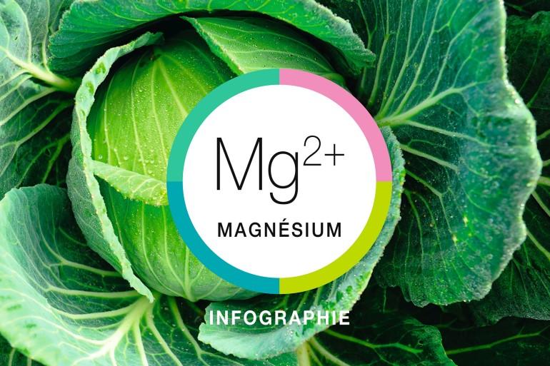 Infographie-rectangle-magnésium_2400