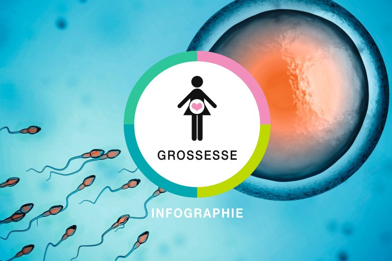 Infographie-rectangle-grossesse_2400