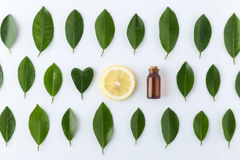 essentiele-olien_planten_le guide des huiles essentielles